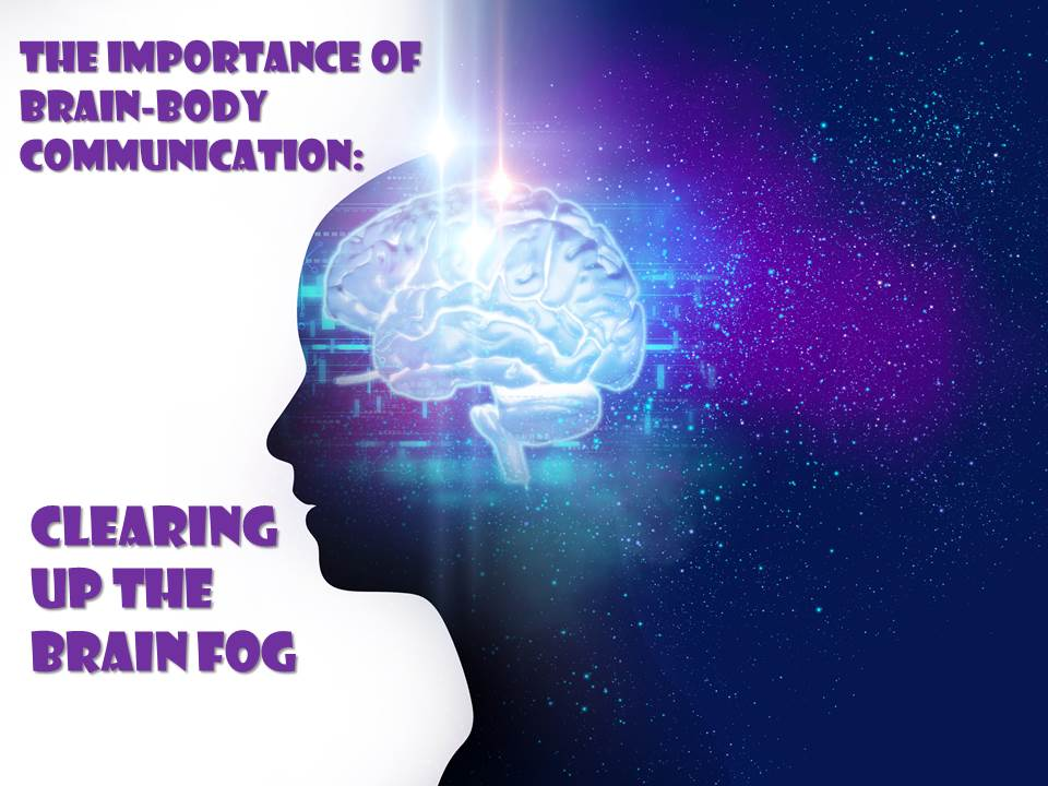 Clearing Up The Brain Fog | Turo Family Chiropractic
